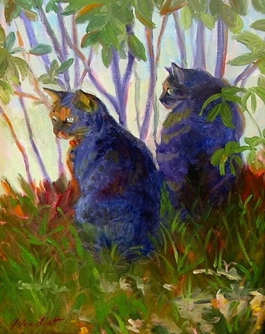 cats hiding under bushes by a lake