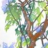 Lilacs and Lichens, Monhegan