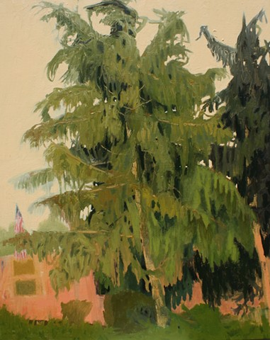 'Neath the Spreading Pines