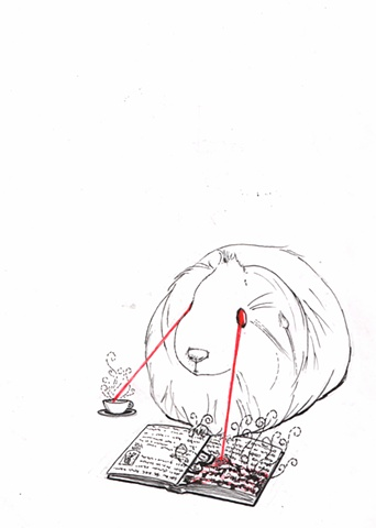 A guinea pig named Deedee.