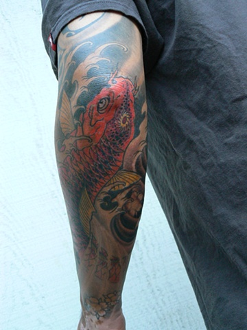 Koi elbow