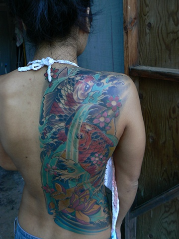 Lotus, koi, water on back