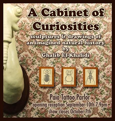 """""""A Cabinet of Curiosities"""" by Ghalib El-Khalidi"""