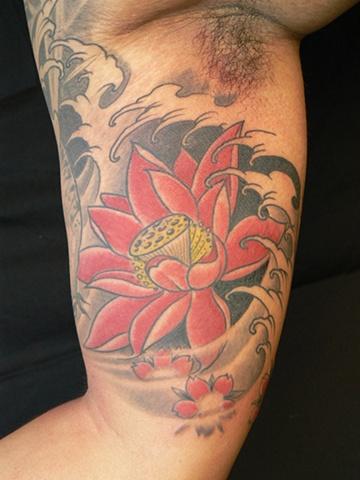 Lotus bicep