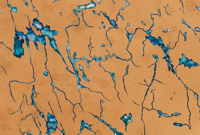 Water, is Taught by Thirst (BLUE), Central Adirondacks, Detail