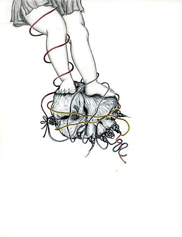 Sarcoptes Ornato Syndrome #2