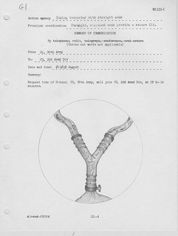 Histocompability: G1-4