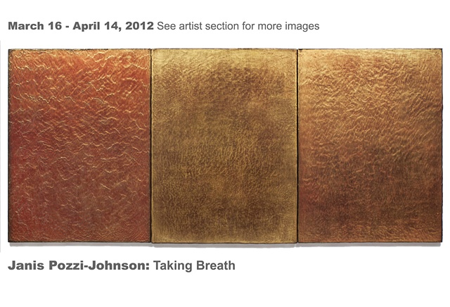 Janis Pozzi-Johnson March 17 - April 14, 2012