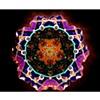 Mandala image of Bubblessence