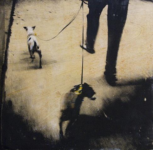 Dogs & Legs
