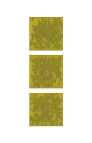 Black dots on yellow (triptych)