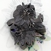 Corsage: Passiflora
