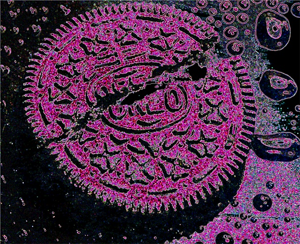 digitally enhanced image of an Oreo cookie, close up, macro, pink