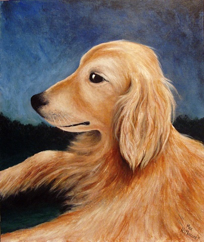 golden retriever, pet portrait