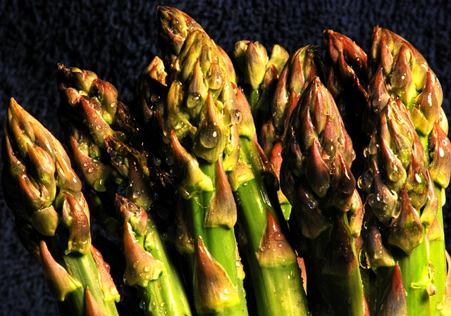 Close up of Asparagus