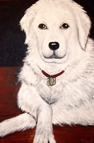 Hungarian Kuvasz, dog portrait,