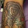 rose2011