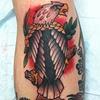 eagle2011