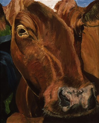 Norwegian Cow, Annie Dillard