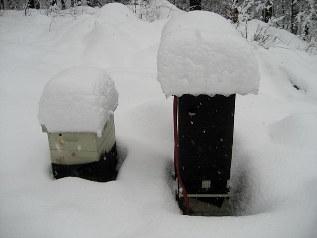 Winter 2009.