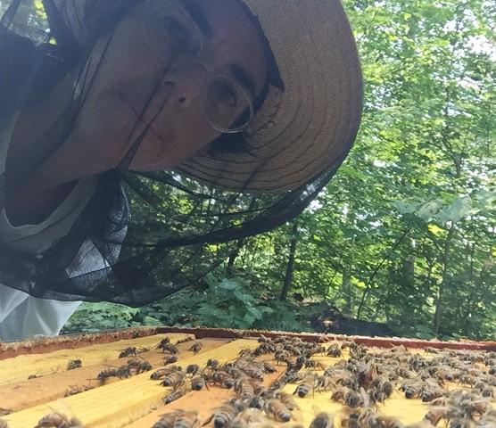 Healthy Hive.
