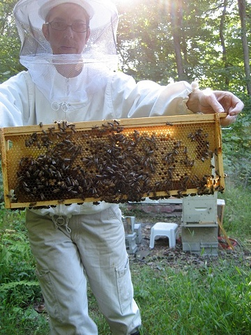 Deb with frame of brood.