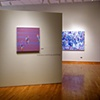 "solo exhibition  ""Martina Nehrling: Paintings""  at the South Bend Museum of Art South Bend, IN 2005"