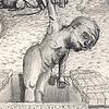 Altus Mutus Liber