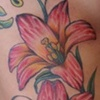lilies lilly tattoo - anthony filo
