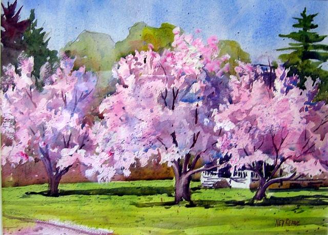 Apple Trees in Bloom, East Main St.