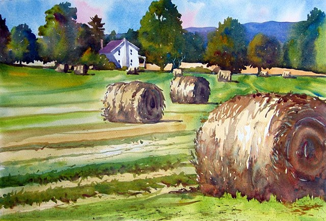 A hayfield in Dorset, VT