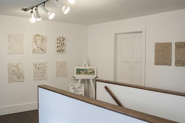 Field Studies Exhibit, Women's Studio Workshop, Rosendale, NY, Summer 2014