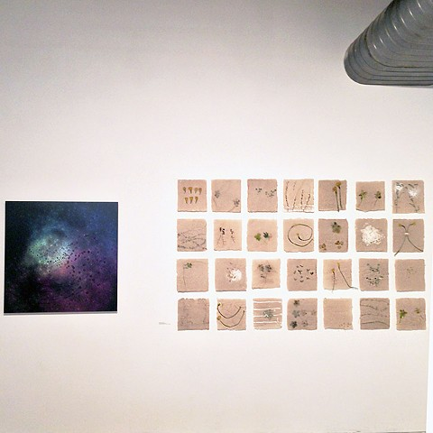 Navigating the Natural, Visual Art Exchange, Raleigh, NC, August 2015