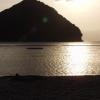 Shinto Island