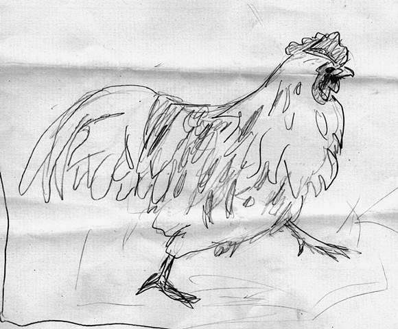 rooster sketch #4