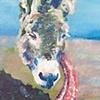 Asstrich
