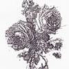 bouquet study 1a