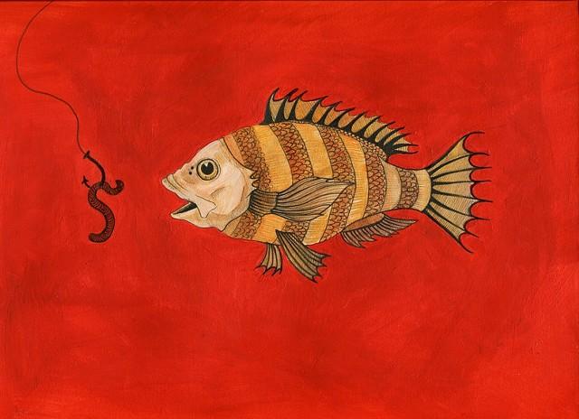 Fish study II.