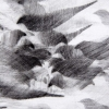 Detail Pigeon Series Etching #2