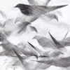 Detail Pigeon Series Etching #6