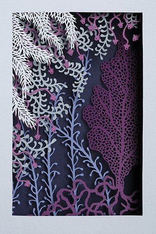 Purple Sea Fan I