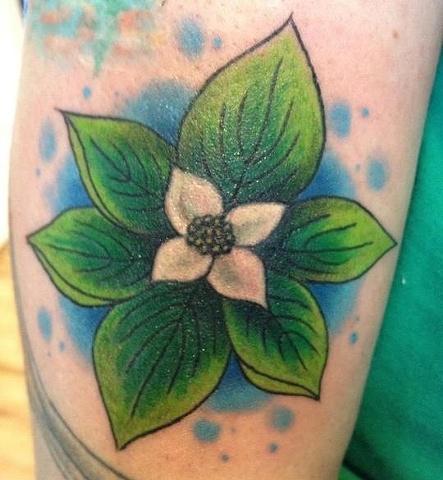 bunchberry tattoo
