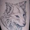 MEMORIAL WOLF (Healed)