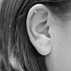Cartilage