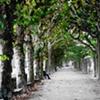 Pathway ~ Frankfort