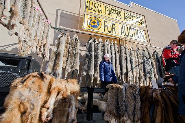 Untitled, Fairbanks, AK