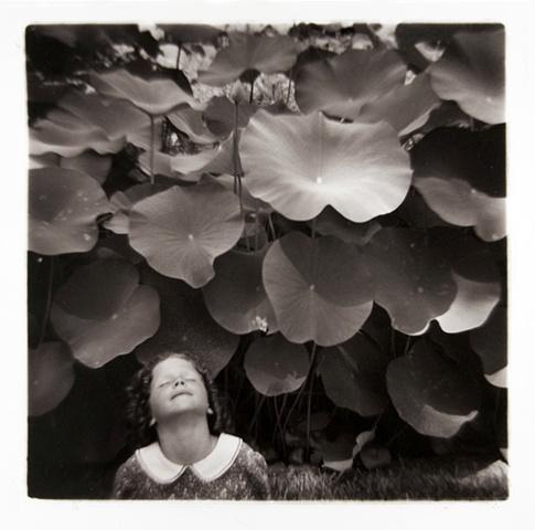Beth, Lotus Pond