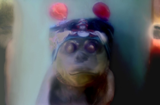 "Chinese Monkey 2011 zone plate photograph archival pigment print 20""x13"""