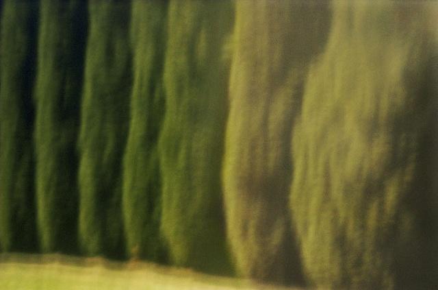 Cedars I Winston-Salem, North Carolina