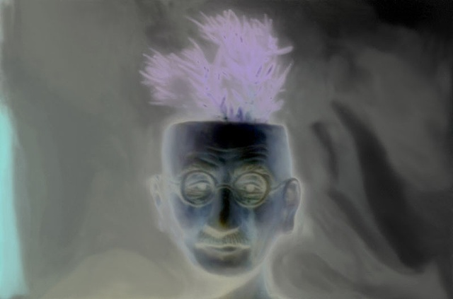 "Mahatma Ghandi Flowerpot 2011 zone plate photograph archival pigment print 20""x13"""